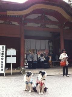 京都旅行2日目(^∇^)