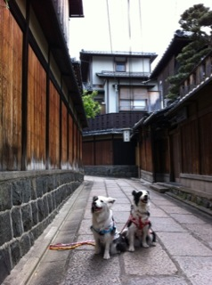 京都旅行1日目(^∇^)